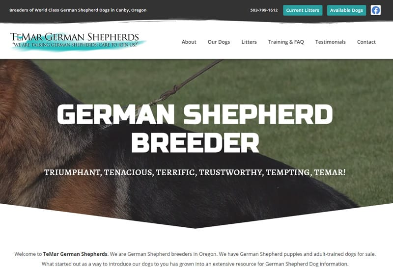 TeMar German Shepherds